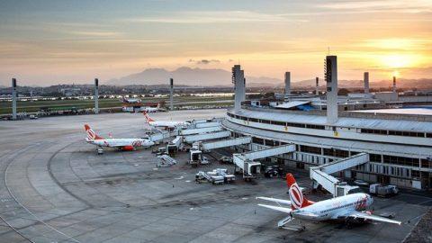 Para evitar acidentes, Rio espanta aves perto de aeroporto usando cães e falcões.