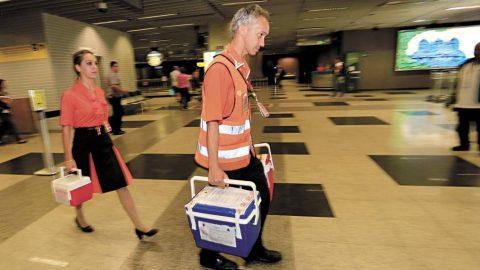 Asas do Bem: saiba como funciona o transporte aéreo gratuito de órgãos transplantados.