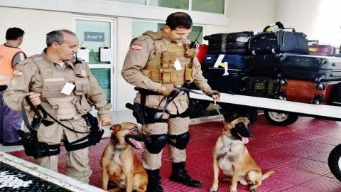 Aeroporto de Jaguaruna é o 1º de SC a implantar base de policiamento canino.